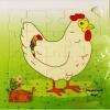 PS-9045 วงจรชีวิตไก่