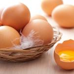 รู้จริงเรื่อง ไข่ และวิธีกินไข่ ให้ได้ประโยชน์