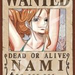 Nami Wanted - Jigsaw One Piece ของแท้ JP แมวทอง (จิ๊กซอว์วันพีช)