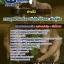 แนวข้อสอบช่างไม้ กรมอุทยานแห่งชาติ สัตว์ป่า และพันธุ์พืช [พร้อมเฉลย] thumbnail 1