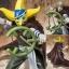 Sogeking Ver. Battle ของแท้ JP แมวทอง - Bandai FZ [โมเดลวันพีช] thumbnail 1