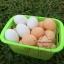 PS-7036 ไข่เป็ด,ไข่ไก่ จำลอง