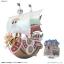 Thousand Sunny Ver. Memorial Color ของแท้ JP แมวทอง - Bandai Grand Ship Collection [โมเดลเรือวันพีช] thumbnail 3