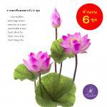 ดอกบัวหลวงประดิษฐ์ ขนาดใหญ่ 6 ชุด สีชมพู