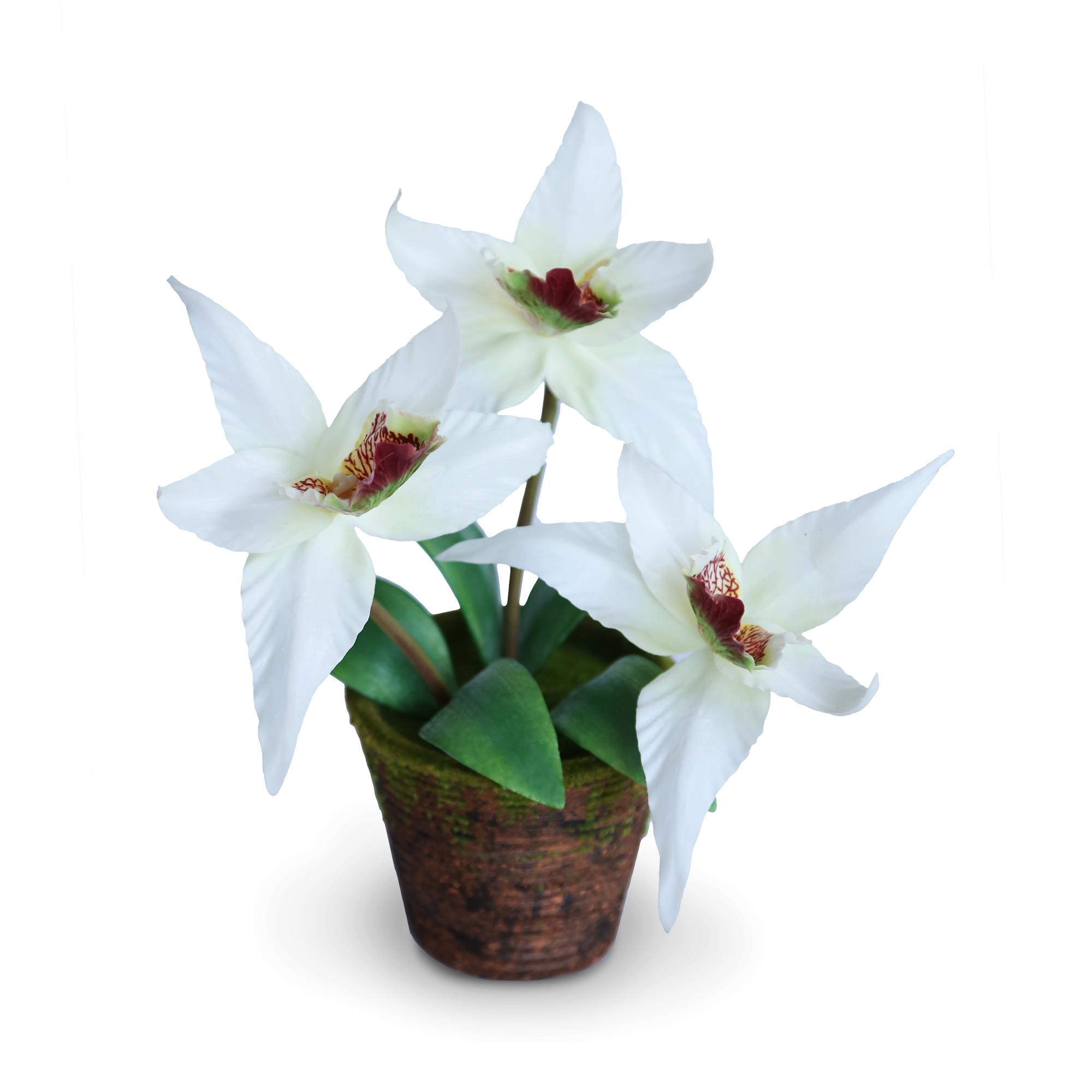 แจกันดอกไม้ประดิษฐ์ โอดอนโทกลอสซัม สีขาวครีม ขนาดกระทัดลัดเหมาะสำหรับตกแต่งโต๊ะ หรือมุมส่วนตัวต่างๆให้ดูเป็นธรรมชาติสวยงาม