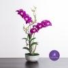 แจกันดอกไม้ประดิษฐ์ เดนโดรเบียม Dendrobium สีออร์คิท ในแจกันเซรามิค