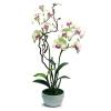 แจกันดอกไม้ประดิษฐ์ เดนโดรเบียม Dendrobium สีครีมออร์คิท ในแจกันเซรามิค