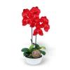 แจกันดอกไม้ประดิษฐ์ ฟาแลนนอฟซิส Phalaenopsis สีแดง ในแจกันเซรามิค จากโรงงานผู้ผลิตโดยตรง