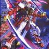 Gundam Bandai MG Astray Red Frame
