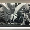 P-Bandai Hobby Online Shop Exclusive: RG 1/144 Destiny Gundam (Deactive Mode)