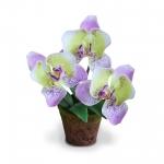 แจกันดอกไม้ประดิษฐ์ขนาดเล็ก เป็นดอกกล้วยไม้ฟาแลนนอฟซิส เหมือนดอกไม้จริงมากสำหรับตกแต่งบ้านและมุมโปรดให้ดูสดชื่น