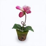 แจกันดอกไม้ประดิษฐ์ รองเท้านารี สีชมพูเข้ม ในกระถางดินเผาลายไม้ประดับมอสเทียม สำหรับตกแต่งบ้านแนวธรรมชาติหรือรีสอร์ท