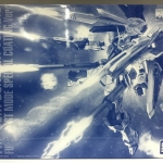 Bandai Exclusive: MG 1/100 Freedom Gundam Ver.2.0 Full Burst Mode Special Coating Ver. + Effect Parts Deluxe Set