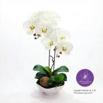 แจกันดอกไม้ประดิษฐ์ ฟาแลนนอฟซิสสีขาวครีม 2 ช่อ ในแจกันเซรามิคสีขาว