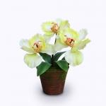 แจกันดอกไม้ประดิษฐ์ ฟาแลนนอฟซิส สีเขียวอ่อน ขนาดกระทัดลัดเหมาะสำหรับตกแต่งโต๊ะ หรือมุมส่วนตัวต่างๆให้ดูเป็นธรรมชาติสวยงาม