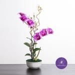 แจกันดอกไม้ประดิษฐ์ เดนโดรเบียม Dendrobium สีชมพูเข้ม ในแจกันเซรามิค