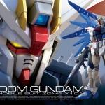 RG 1/144 ZGMF-X10A Freedom Gundam