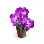 แจกันดอกไม้ประดิษฐ์ ฟาแลนนอฟซิส สีออร์คิท ขนาดกระทัดลัดเหมาะสำหรับตกแต่งโต๊ะ หรือมุมส่วนตัวต่างๆให้ดูเป็นธรรมชาติสวยงาม
