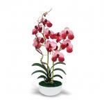 แจกันดอกไม้ประดิษฐ์ แวนด้า Vanda สีมอว์พ ในแจกันเซรามิค จากโรงงานผู้ผลิตโดยตรง