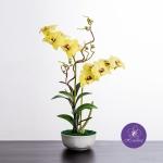แจกันดอกไม้ประดิษฐ์ เดนโดรเบียม Dendrobium สีเหลือง ในแจกันเซรามิค