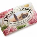 Nesti Dante Pisa Soap (250g)