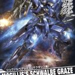 1/100 Schwalbe Graze [Mcgillis Type]