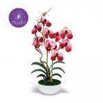 แจกันดอกไม้ประดิษฐ์ แวนด้า Vanda สีมอพว์ ในแจกันเซรามิค จากโรงงานผู้ผลิตโดยตรง
