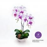 แจกันดอกไม้ประดิษฐ์ ฟาแลนนอฟซิสสีขาวโคนม่วง 2 ช่อ ในแจกันเซรามิคสีขาว