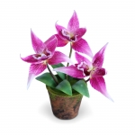 แจกันดอกไม้ประดิษฐ์ โอดอนโทกลอสซัม สีชมพูเข้ม ขนาดกระทัดลัดเหมาะสำหรับตกแต่งโต๊ะ หรือมุมส่วนตัวต่างๆให้ดูเป็นธรรมชาติสวยงาม