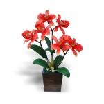 แจกันดอกไม้ประดิษฐ์ แคทลียา Cattleya สีส้ม ในแจกันไม้จริงสีโอ๊ค