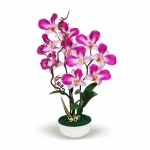 แจกันดอกไม้ประดิษฐ์ เดนโดรเบียม Dendrobium สีออร์คิท ในแจกันเซรามิค จากโรงงานผู้ผลิตโดยตรง