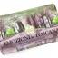 Nesti Dante Enchanting Forest Soap (250g) thumbnail 1